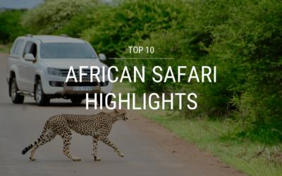 Top 10 African Safari Highlights